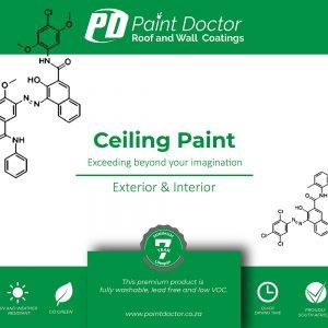 Ceiling-Paint - Paint Doctor